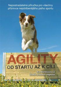 Agility od startu až k cíli