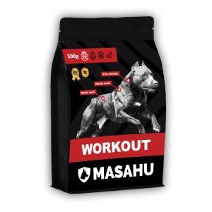 MASAHU Workout