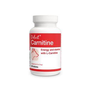 Dolvit Carnitine – 90 tbl.
