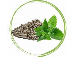 Dromy Medovka lekárska – granule z listov 1000 g