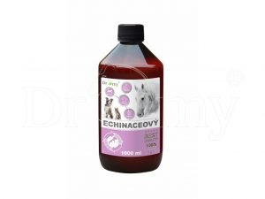 Dromy Echinaceový sirup 1000 ml